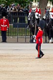 The Major General's Review 2011: A Lieutenant of the Scots Guards. Behind, troopers of The Life Guards, Household Cavalry).. Horse Guards Parade, Westminster, London SW1, Greater London, United Kingdom, on 28 May 2011 at 11:49, image #231