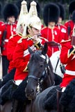 The Major General's Review 2011: Flautist of The Life Guards playing the piccolo.. Horse Guards Parade, Westminster, London SW1, Greater London, United Kingdom, on 28 May 2011 at 11:54, image #239