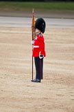 The Major General's Review 2011: A Keeper of the Ground of the Welsh Guards, marking the spot of No. 5 Guard on Horse Guards Parade.. Horse Guards Parade, Westminster, London SW1, Greater London, United Kingdom, on 28 May 2011 at 12:11, image #287