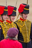 The Major General's Review 2011: Posing with and for spectators - members of the Royal Horse Artillery.. Horse Guards Parade, Westminster, London SW1, Greater London, United Kingdom, on 28 May 2011 at 12:21, image #300