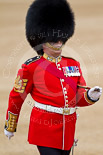 The Major General's Review 2011: Close-up of Garrison Sergeant Major, WO1 William Mott OBE, Welsh Guards. Image #58, 28 May 2011 10:32 Horse Guards Parade, London, UK