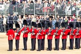 Trooping the Colour 2011: No. 6 Guard, No. 7 Company,  Coldstream Guards.. Horse Guards Parade, Westminster, London SW1, Greater London, United Kingdom, on 11 June 2011 at 10:26, image #34