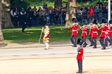 Trooping the Colour 2011: Drum Major Stephen Staite, Grenadier Guards, leading the Band of the Grenadier Guards to the parade ground.. Horse Guards Parade, Westminster, London SW1, Greater London, United Kingdom, on 11 June 2011 at 10:27, image #37