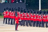 Trooping the Colour 2011: No. 4 Guard, Nijmegen Company Grenadier Guards, marching into their position on Horse Guards Parade.. Horse Guards Parade, Westminster, London SW1, Greater London, United Kingdom, on 11 June 2011 at 10:28, image #40