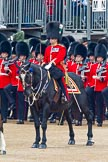 Trooping the Colour 2011: The Major of the Parade, Major Benedict Peter Norman Ramsay, Welsh Guards.. Horse Guards Parade, Westminster, London SW1, Greater London, United Kingdom, on 11 June 2011 at 11:33, image #228
