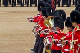 Trooping the Colour 2011: Musicians of the Band of the Grenadier Guards.. Horse Guards Parade, Westminster, London SW1, Greater London, United Kingdom, on 11 June 2011 at 11:52, image #309