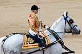 Trooping the Colour 2011: Jack Hargreaves, Head Coachman, riding one of the two Winsor Grey horses that pull the ivory mounted phaeton.. Horse Guards Parade, Westminster, London SW1, Greater London, United Kingdom, on 11 June 2011 at 12:10, image #413