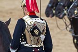 Trooping the Colour 2011: One of the four troopers of the Blues and Royals near the end of the Royal Procession during March Off. The reflection shows Horse Guards Building.. Horse Guards Parade, Westminster, London SW1, Greater London, United Kingdom, on 11 June 2011 at 12:12, image #429