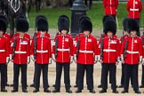 The Colonel's Review 2012: No. 2 Guard, 1st Battalion Coldstream Guards.. Horse Guards Parade, Westminster, London SW1,  United Kingdom, on 09 June 2012 at 10:41, image #107