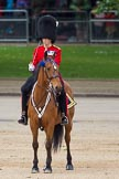 The Colonel's Review 2012: Major of the Parade, Major Mark Lewis, Welsh Guards.. Horse Guards Parade, Westminster, London SW1,  United Kingdom, on 09 June 2012 at 10:44, image #115