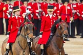 The Colonel's Review 2012: The arrival of the first members of the Royal family. leading the way two Liveried Grooms from the Royal Mews.. Horse Guards Parade, Westminster, London SW1,  United Kingdom, on 09 June 2012 at 10:49, image #120