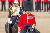 The Colonel's Review 2012: Colonel Coldstream Guards, Lieutenant General J J C Bucknall.. Horse Guards Parade, Westminster, London SW1,  United Kingdom, on 09 June 2012 at 11:04, image #197