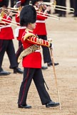 The Colonel's Review 2012: Senior Drum Major, M Betts, Grenadier Guards.. Horse Guards Parade, Westminster, London SW1,  United Kingdom, on 09 June 2012 at 11:06, image #205