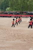 The Colonel's Review 2012: The Massed Bands Troop.. Horse Guards Parade, Westminster, London SW1,  United Kingdom, on 09 June 2012 at 11:10, image #231