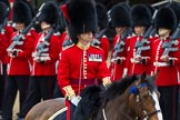 The Colonel's Review 2012: Field Officer in Brigade Waiting, Lieutenant Colonel R C N Sergeant, Coldstream Guards, riding Burniston.. Horse Guards Parade, Westminster, London SW1,  United Kingdom, on 09 June 2012 at 11:31, image #311