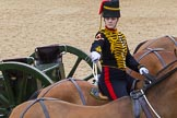 The Colonel's Review 2012: A ceremonial gunner on one of the six horses that pull a 13-pounder gum, saluting with the whip.. Horse Guards Parade, Westminster, London SW1,  United Kingdom, on 09 June 2012 at 11:52, image #401