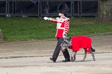 Trooping the Colour 2012: Conmael, the Irish Wolfhound mascot dog of the Irish Guards, with his handler.. Horse Guards Parade, Westminster, London SW1,  United Kingdom, on 16 June 2012 at 10:23, image #46
