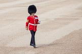Trooping the Colour 2012: Garrison Sergeant Major, London District, Warrant Officer Class 1 W D G Mott, Welsh Guards.. Horse Guards Parade, Westminster, London SW1,  United Kingdom, on 16 June 2012 at 10:32, image #76
