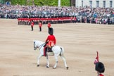 Trooping the Colour 2012: The Adjutant of the Parade, Captain F O B Wells, Coldstream Guards, is riding onto Horse Guards Parade. On the right the Colour Party.. Horse Guards Parade, Westminster, London SW1,  United Kingdom, on 16 June 2012 at 10:34, image #82