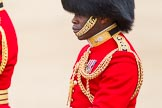 Trooping the Colour 2012: Close-up view of the Aide-de-Camp, Captain Folarin Kuku, Grenadier Guards.. Horse Guards Parade, Westminster, London SW1,  United Kingdom, on 16 June 2012 at 11:03, image #208