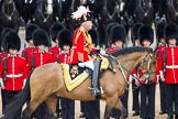 Trooping the Colour 2012: The Master of the Horse, The Lord Vestey, during the Inspection of the Line.. Horse Guards Parade, Westminster, London SW1,  United Kingdom, on 16 June 2012 at 11:04, image #219