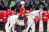 Trooping the Colour 2012: During the Inspection of the Line -Major General Commanding the Household Division and General Officer Commanding London District Major General G P R Norton.. Horse Guards Parade, Westminster, London SW1,  United Kingdom, on 16 June 2012 at 11:04, image #222