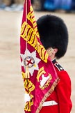 Trooping the Colour 2012: A closer look at the Colour.. Horse Guards Parade, Westminster, London SW1,  United Kingdom, on 16 June 2012 at 11:17, image #293