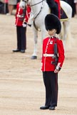 Trooping the Colour 2012: The Sentry, Guardsman Dunbar, on the Northern side of the Colour Sergeant Paul Baines.. Horse Guards Parade, Westminster, London SW1,  United Kingdom, on 16 June 2012 at 11:19, image #299