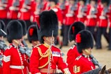 Trooping the Colour 2012: The Field Officer in Brigade Waiting, Lieutenant Colonel R C N Sergeant, Coldstream Guards, during the March Past.. Horse Guards Parade, Westminster, London SW1,  United Kingdom, on 16 June 2012 at 11:34, image #397