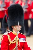 Trooping the Colour 2012: Close-up of the Field Officer in Brigade Waiting, Lieutenant Colonel R C N Sergeant, Coldstream Guards.. Horse Guards Parade, Westminster, London SW1,  United Kingdom, on 16 June 2012 at 11:34, image #398