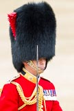Trooping the Colour 2012: Close-up of the Field Officer in Brigade Waiting, Lieutenant Colonel R C N Sergeant, Coldstream Guards.. Horse Guards Parade, Westminster, London SW1,  United Kingdom, on 16 June 2012 at 11:35, image #401