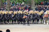 Trooping the Colour 2012: The Mounted Bands of the Household Cavalry during the March Past. In the centre, saluting the Colour, Captain J Griffiths, The Blues and Royals.. Horse Guards Parade, Westminster, London SW1,  United Kingdom, on 16 June 2012 at 11:41, image #461