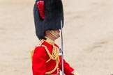Trooping the Colour 2012: Close-up of the Field Officer in Brigade Waiting Lieutenant Colonel R C N Sergeant, Coldstream Guards.. Horse Guards Parade, Westminster, London SW1,  United Kingdom, on 16 June 2012 at 11:45, image #481