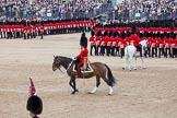 Trooping the Colour 2012: With the Adjutant of the Parade on the white horse following the guards divisions around Horse Guards Parade, the Field Officer returns to the centre of the action.. Horse Guards Parade, Westminster, London SW1,  United Kingdom, on 16 June 2012 at 11:47, image #503