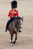 Trooping the Colour 2012: The Field Officer in Brigade Waiting, Lieutenant Colonel R C N Sergeant, Coldstream Guards, riding Burniston.. Horse Guards Parade, Westminster, London SW1,  United Kingdom, on 16 June 2012 at 11:47, image #505