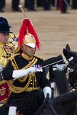 Trooping the Colour 2012: The Directors of Music of the Mounted Bands, Captain J Griffiths, The Blues and Royals.. Horse Guards Parade, Westminster, London SW1,  United Kingdom, on 16 June 2012 at 11:57, image #576