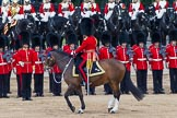 Trooping the Colour 2012: The Field Officer in Brigade Waiting, Lieutenant Colonel R C N Sergeant, Coldstream Guards, riding Burniston, is turning towards the guardsmen.. Horse Guards Parade, Westminster, London SW1,  United Kingdom, on 16 June 2012 at 12:03, image #615