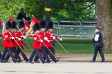 The Colonel's Review 2013: The 'Keepers of the Ground', guardsmen bearing marker flags for their respective regiments, marching on Horse Guards Road along St James's Park.. Horse Guards Parade, Westminster, London SW1,  United Kingdom, on 08 June 2013 at 09:52, image #18