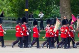The Colonel's Review 2013: The 'Keepers of the Ground', guardsmen bearing marker flags for their respective regiments, marching on Horse Guards Road along St James's Park.. Horse Guards Parade, Westminster, London SW1,  United Kingdom, on 08 June 2013 at 09:52, image #19
