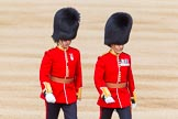 The Colonel's Review 2013: The second pair of officers following the Keepers of the Ground, Lieutenant E C S Birrel and Major J D Salusbury, No. 2 Guard, 1st Battalion Welsh Guards.. Horse Guards Parade, Westminster, London SW1,  United Kingdom, on 08 June 2013 at 09:53, image #22