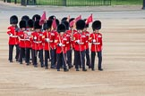 The Colonel's Review 2013: The 'Keepers of the Ground', guardsmen bearing marker flags for their respective regiments, turning towards Horse Guards Parade at the Guards Memorial.. Horse Guards Parade, Westminster, London SW1,  United Kingdom, on 08 June 2013 at 09:54, image #28