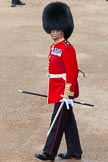 The Colonel's Review 2013. Horse Guards Parade, Westminster, London SW1,  United Kingdom, on 08 June 2013 at 10:05, image #34