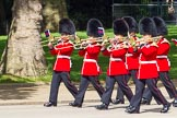 The Colonel's Review 2013: Musicians of the Band of the Irish Guards.. Horse Guards Parade, Westminster, London SW1,  United Kingdom, on 08 June 2013 at 10:16, image #60