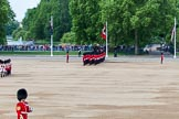 The Colonel's Review 2013: No. 1 Guard (Escort for the Colour),1st Battalion Welsh Guards. Behind them spectators watching from St James's Park.. Horse Guards Parade, Westminster, London SW1,  United Kingdom, on 08 June 2013 at 10:32, image #137