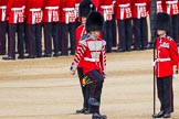 The Colonel's Review 2013: Welsh Guards Drummer approaching Colour Sergeant R J Heath, Welsh Guards, carrying the Colour and the two sentries.. Horse Guards Parade, Westminster, London SW1,  United Kingdom, on 08 June 2013 at 10:32, image #141