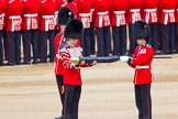 The Colonel's Review 2013: Colour Sergeant R J Heath, Welsh Guards, removing the Colour case.. Horse Guards Parade, Westminster, London SW1,  United Kingdom, on 08 June 2013 at 10:33, image #143
