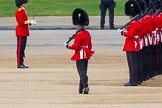 The Colonel's Review 2013. Horse Guards Parade, Westminster, London SW1,  United Kingdom, on 08 June 2013 at 10:33, image #144