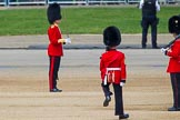The Colonel's Review 2013. Horse Guards Parade, Westminster, London SW1,  United Kingdom, on 08 June 2013 at 10:33, image #145