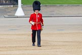 The Colonel's Review 2013: The Subaltern of No. 2 Guard, Captain B Bardsley.. Horse Guards Parade, Westminster, London SW1,  United Kingdom, on 08 June 2013 at 10:33, image #146