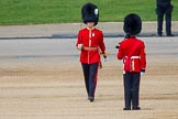 The Colonel's Review 2013: The Subaltern of No. 1 Guard, Captain F O Lloyd-George.. Horse Guards Parade, Westminster, London SW1,  United Kingdom, on 08 June 2013 at 10:33, image #147